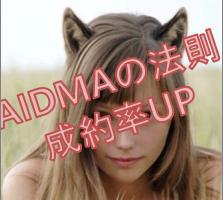 AIDMA2